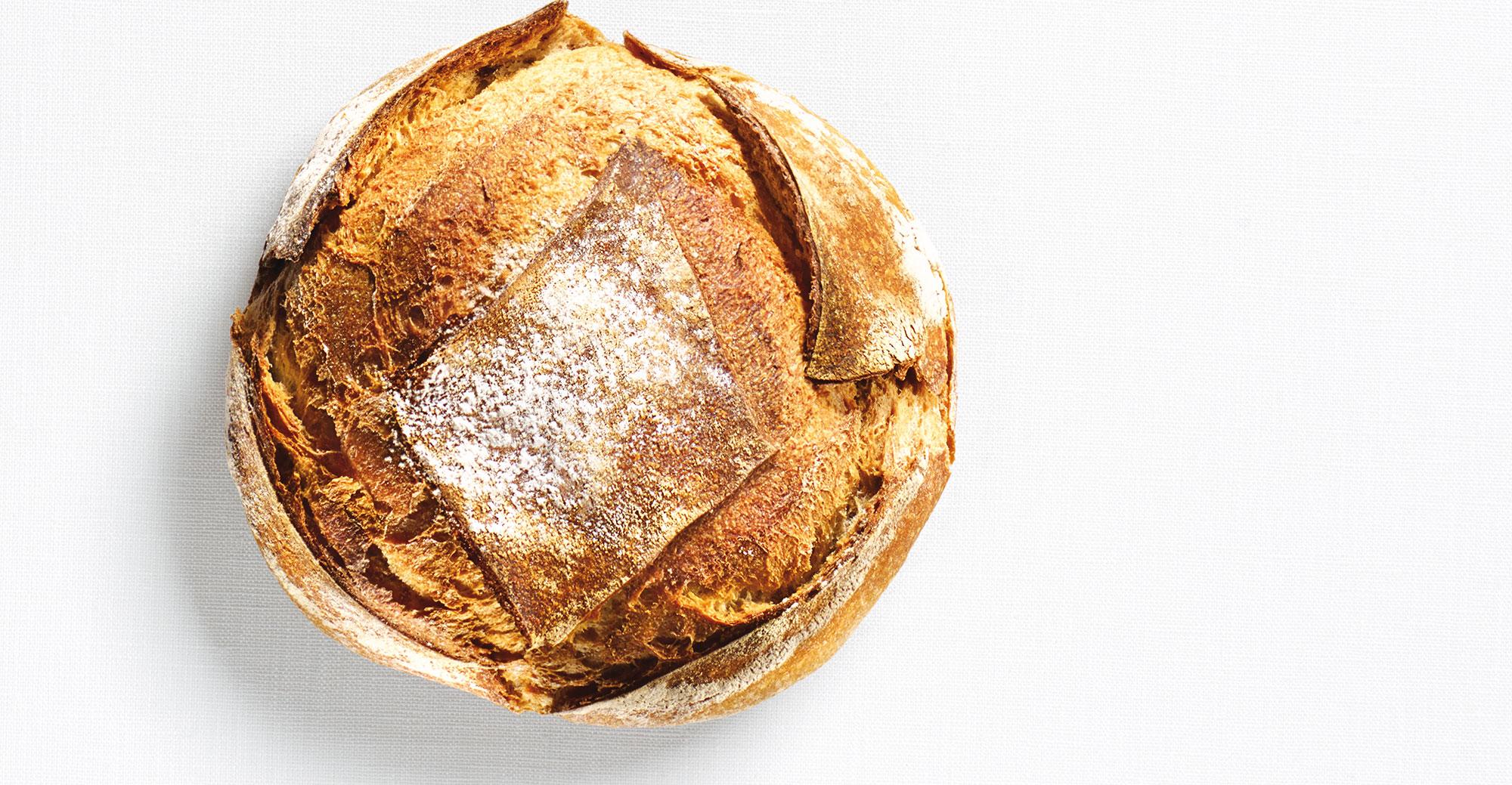 Le gluten : qu'en est-il ?